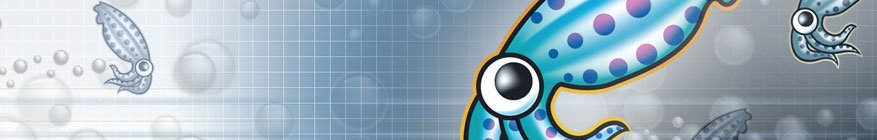 Eliminar el pie o footer de squid linux proxy 2